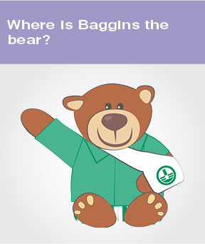 Where is Baggins the bear?